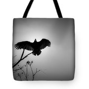 Black Buzzard 5 Tote Bag