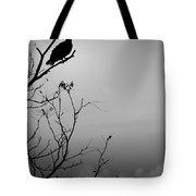 Black Buzzard 7 Tote Bag
