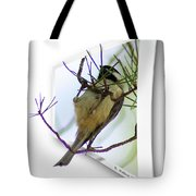 Black-capped Chick-a-dee Tote Bag