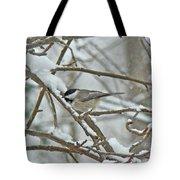 Black Capped Chickadee - Poecile Atricapillus Tote Bag