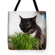 Black Cat Eating Cat Grass Tote Bag