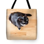 Black Cat Looking At You Tote Bag