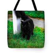 Black Cat Maine Tote Bag