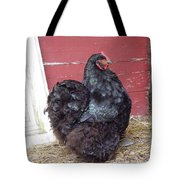 Black Chicken Tote Bag
