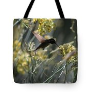 Black Chinned Hummingbird In Flight Tote Bag