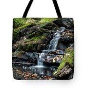 Black Creek Falls In Autumn, 2016 Tote Bag