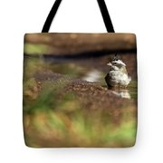 Black-crested Finch Tote Bag