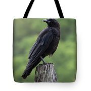Black Crow Pearched On A Post Tote Bag