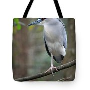 Black Crowned Night Heron IIi Tote Bag