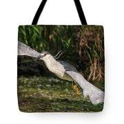Black-crowned Night Heron In Flight Tote Bag
