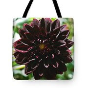 Black Dalia  Tote Bag