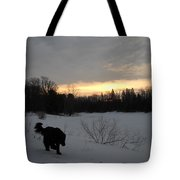 Black Dog Exploring Snow At Dawn Tote Bag