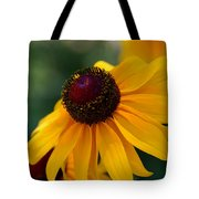 Black Eye Susan Tote Bag