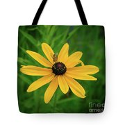 Black Eyed Susan And Friends Tote Bag