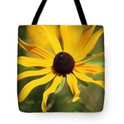 Black Eyed Susan In The Sun  Tote Bag