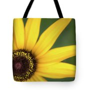 Black-eyed Susan Tote Bag by Ron Pate