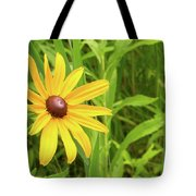 Black Eyed Susan V Tote Bag