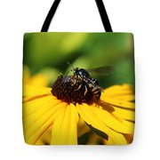 Black Eyed Susan With Wasp Tote Bag
