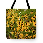 Black Eyed Susans-1 Tote Bag