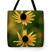 Black Eyed Susans 3276 H_2 Tote Bag