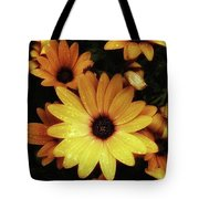 Black Eyed Susans. Looks Like They're Tote Bag