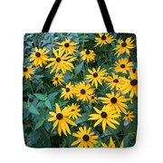 Black Eyes Of The Sun Tote Bag by Carrie Viscome Skinner