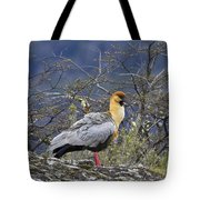 Black-faced Ibis Tote Bag