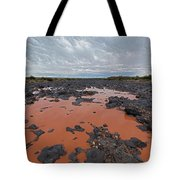 Black Falls Crossing Tote Bag