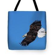 Black Feather Bald Eagle Tote Bag