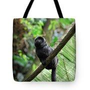 Black Goeldi's Marmoset Sitting On The Vine Tote Bag