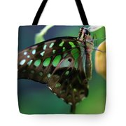 Black Green Tailed Jay 2 Tote Bag