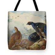 Black Grouse And Gamebirds By Thorburn Tote Bag