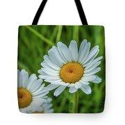 Black-headed Daisy's Tote Bag