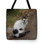 Black Heart Cat Tote Bag