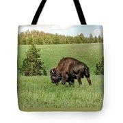 Black Hills Bull Bison Tote Bag by Robert Frederick