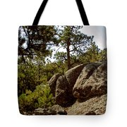 Black Hills II Tote Bag