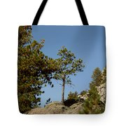 Black Hills Lone Tree Tote Bag