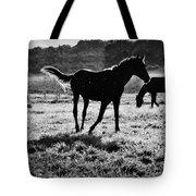 Black Horse. Tote Bag