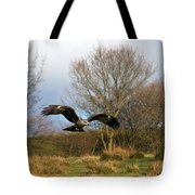Black Kite Tote Bag