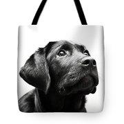 Black Labrador Retriever Potrait Tote Bag