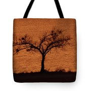 Black Lace Tree Tote Bag