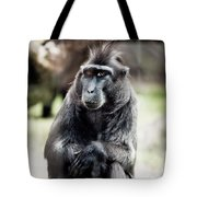 Black Macaque Monkey Sitting Tote Bag