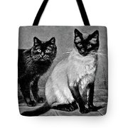 Black Manx And Siamese Cats Tote Bag