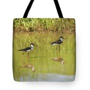 Black Necked Stilt, In The Pond In The Galapagos Tote Bag