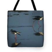 Black-necked Stilts - California Central Coast Tote Bag