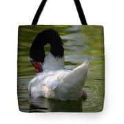 Black-necked Swan II Tote Bag