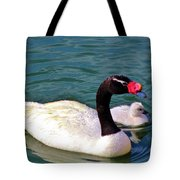 Black-necked Swan With Baby Tote Bag