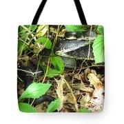 Black Rat Snake Tote Bag