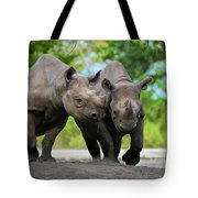 Black Rhinoceroses Tote Bag