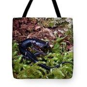Black Salamander Tote Bag